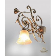 A wrought iron light Rustic (SI0601)